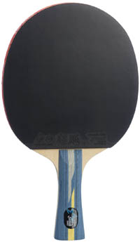 8. DHS Professional Carbon Table Tennis Racket-shake hands