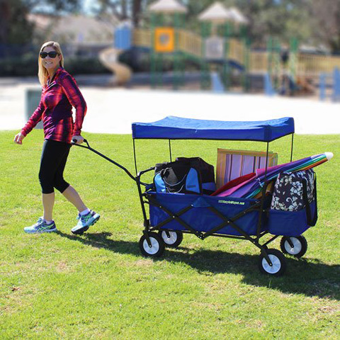 11. EasyGoWagon Folding Collapsible Utility Wagon