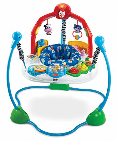 02. Fisher-Price Laugh & Learn Jumperoo