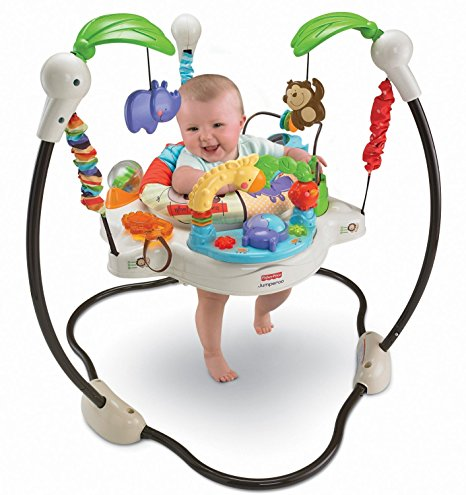 09. Fisher-Price Luv U Zoo Jumperoo