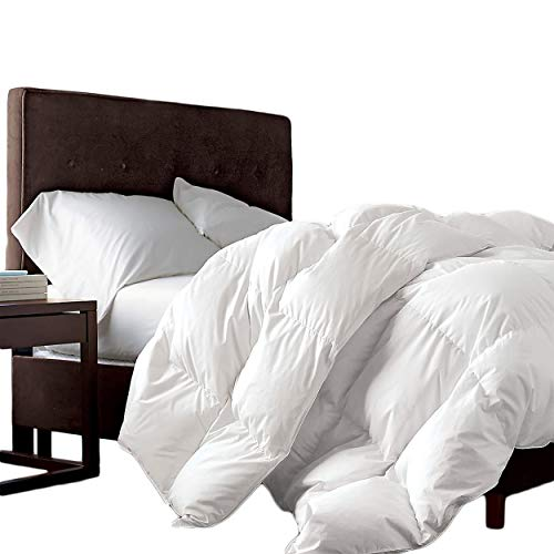 LUXURIOUS Queen/ Full-Size Siberian Goose Down Comforter