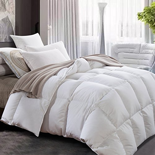 Luxurious All Seasons Lightweight White Goose Down Comforter from ROYALAY