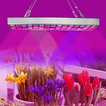 LED Grow Lights for Plant Growing