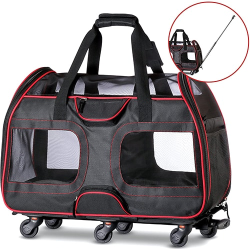 Best Large Dog Carriers